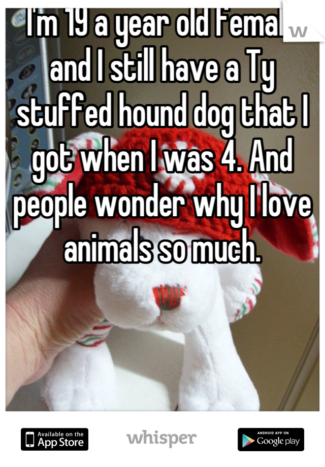 I'm 19 a year old female and I still have a Ty stuffed hound dog that I got when I was 4. And people wonder why I love animals so much.