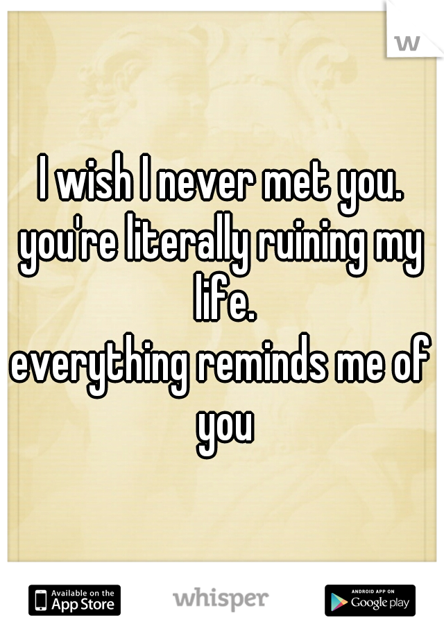 I wish I never met you. you're literally ruining my life. everything reminds me of you