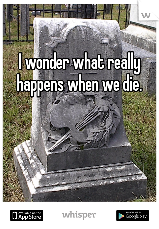 I wonder what really happens when we die.