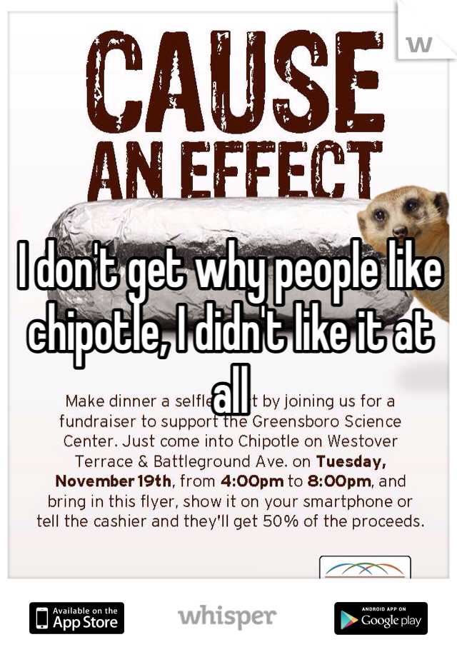 I don't get why people like chipotle, I didn't like it at all