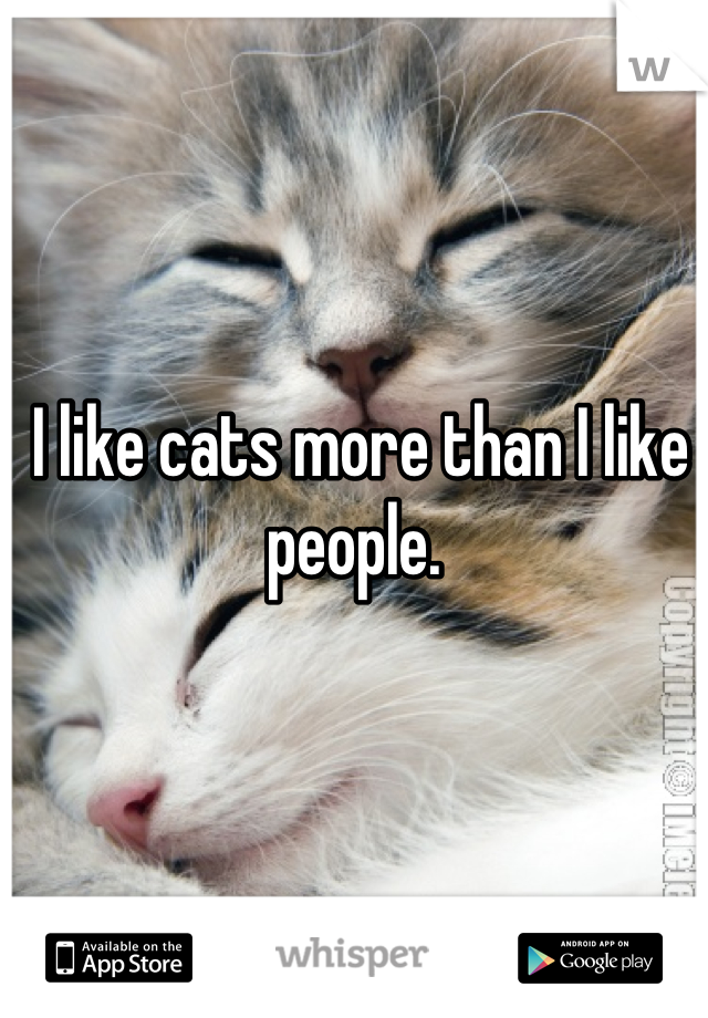 I like cats more than I like people.
