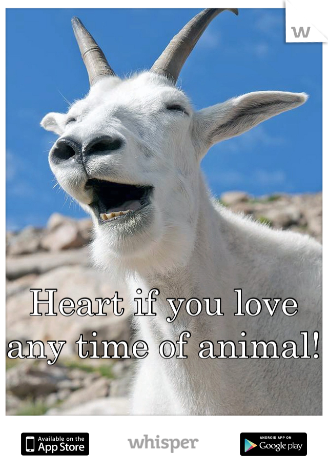 Heart if you love any time of animal!