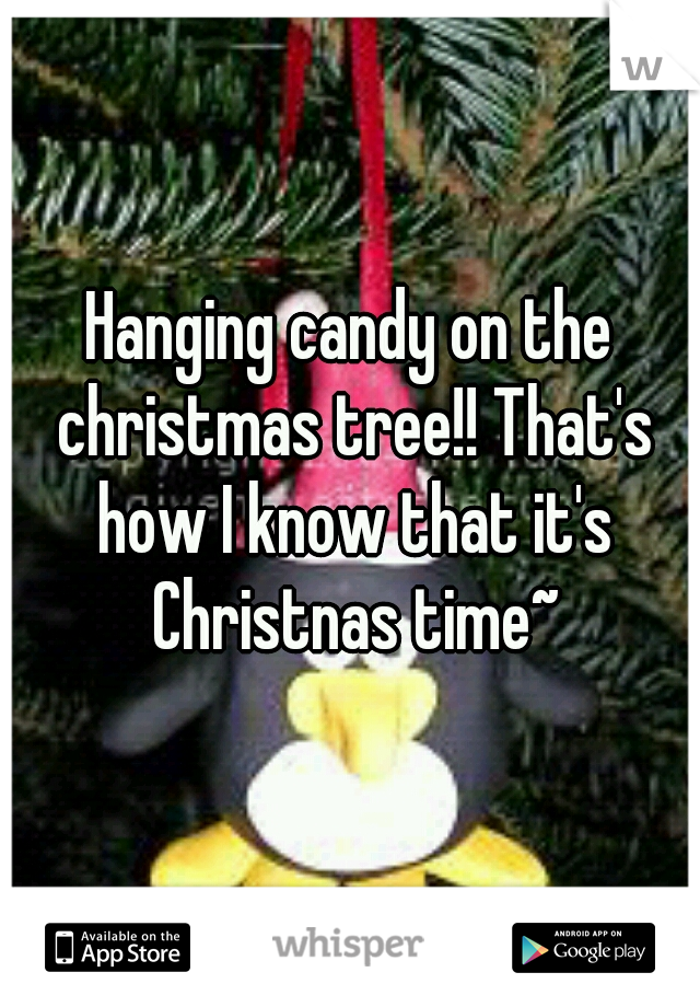 Hanging candy on the christmas tree!! That's how I know that it's Christnas time~