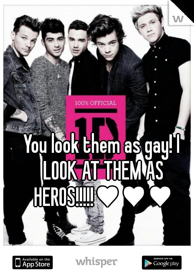 You look them as gay! I LOOK AT THEM AS HEROS!!!!!♥♥♥