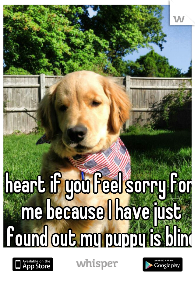 heart if you feel sorry for me because I have just found out my puppy is blind :(