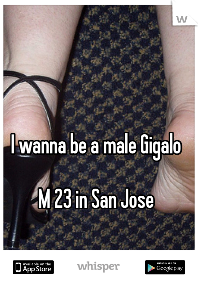 I wanna be a male Gigalo   M 23 in San Jose