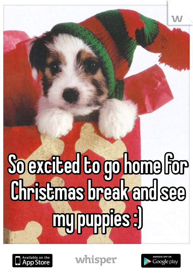 So excited to go home for Christmas break and see my puppies :)