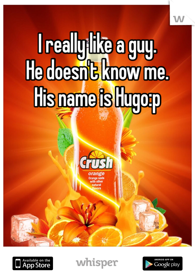 I really like a guy.  He doesn't know me.  His name is Hugo:p