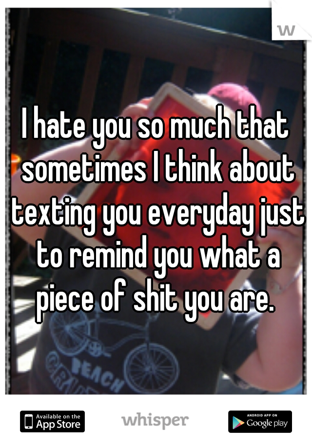 I hate you so much that sometimes I think about texting you everyday just to remind you what a piece of shit you are.
