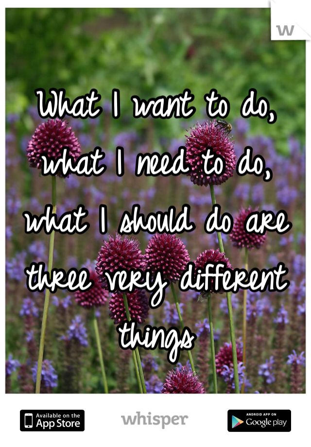 What I want to do, what I need to do, what I should do are three very different things