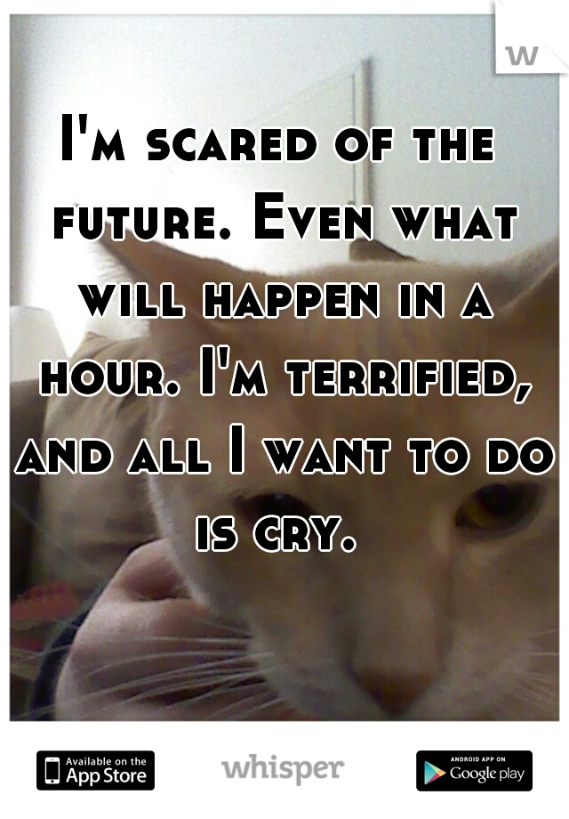 I'm scared of the future. Even what will happen in a hour. I'm terrified, and all I want to do is cry.