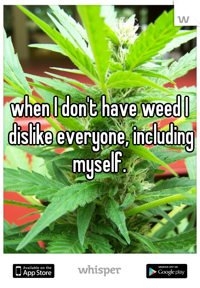 when I don't have weed I dislike everyone, including myself.