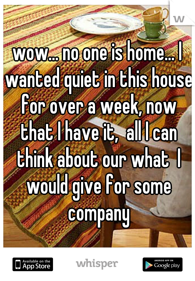 wow... no one is home... I wanted quiet in this house for over a week, now that I have it,  all I can think about our what  I would give for some company