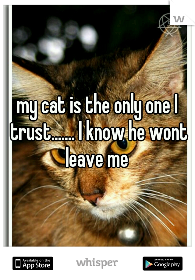 my cat is the only one I trust....... I know he wont leave me