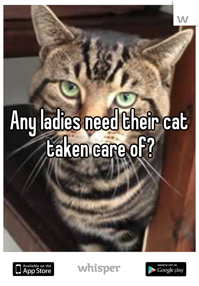 Any ladies need their cat taken care of?