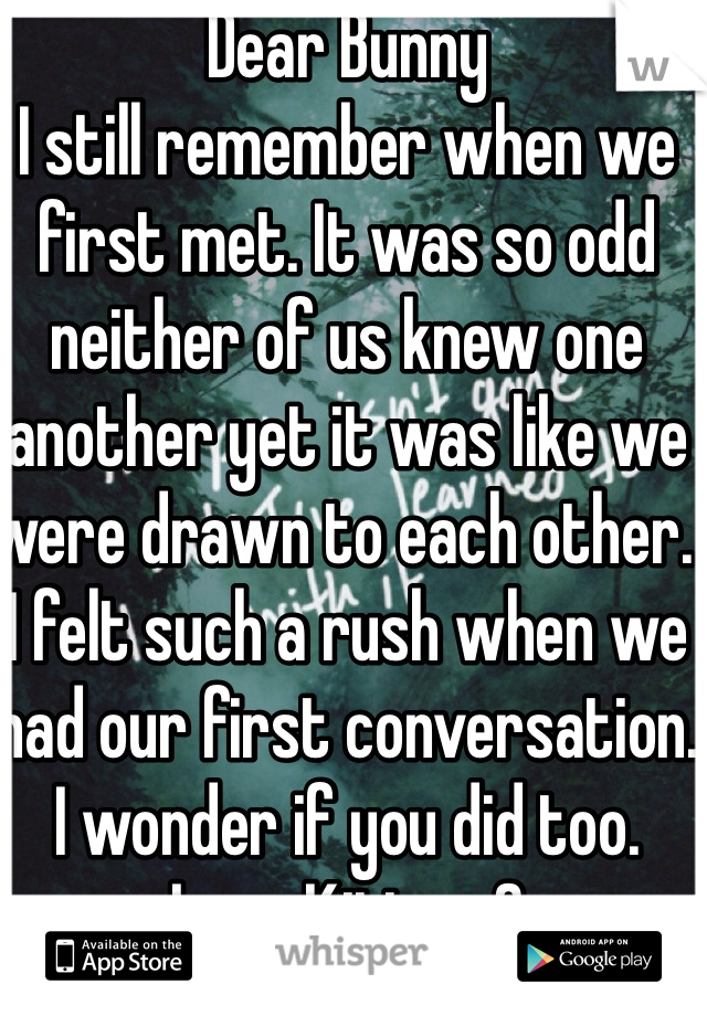 Dear Bunny I still remember when we first met. It was so odd neither of us knew one another yet it was like we were drawn to each other. I felt such a rush when we had our first conversation. I wonder if you did too. Love Kitty <3