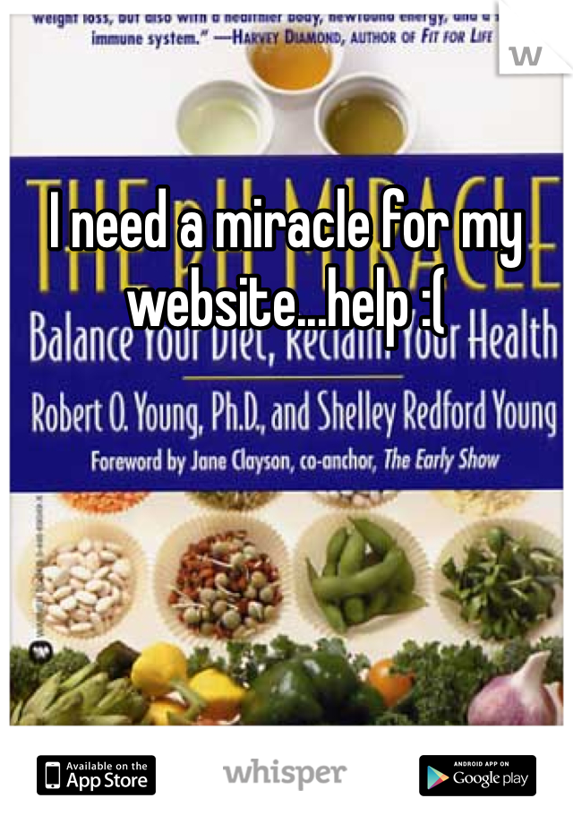 I need a miracle for my website...help :(