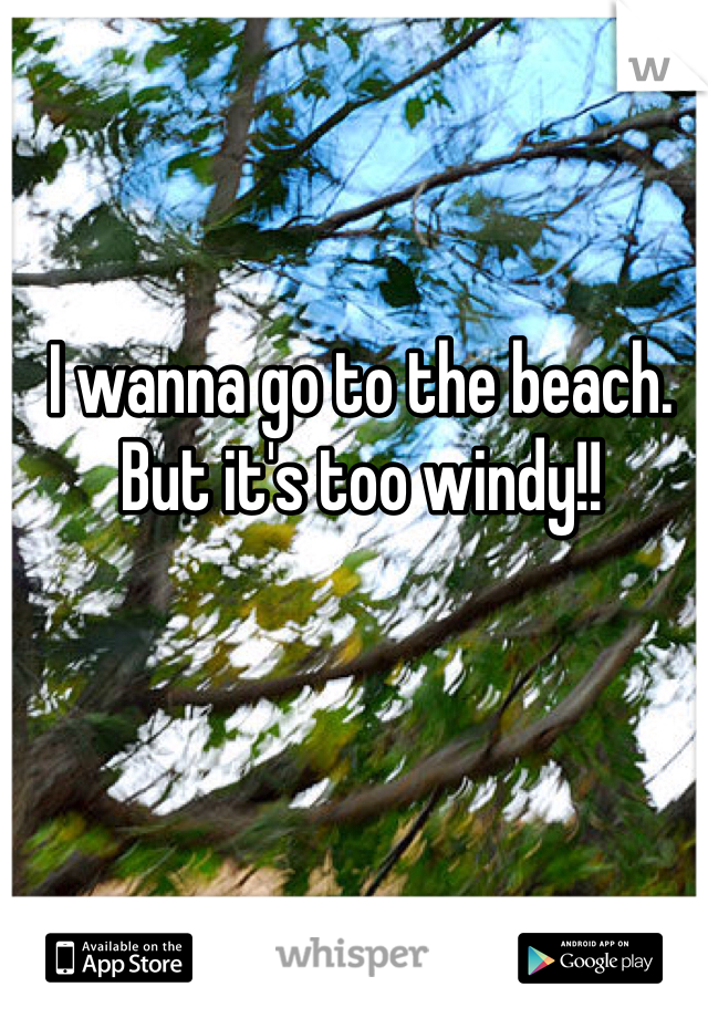 I wanna go to the beach. But it's too windy!!