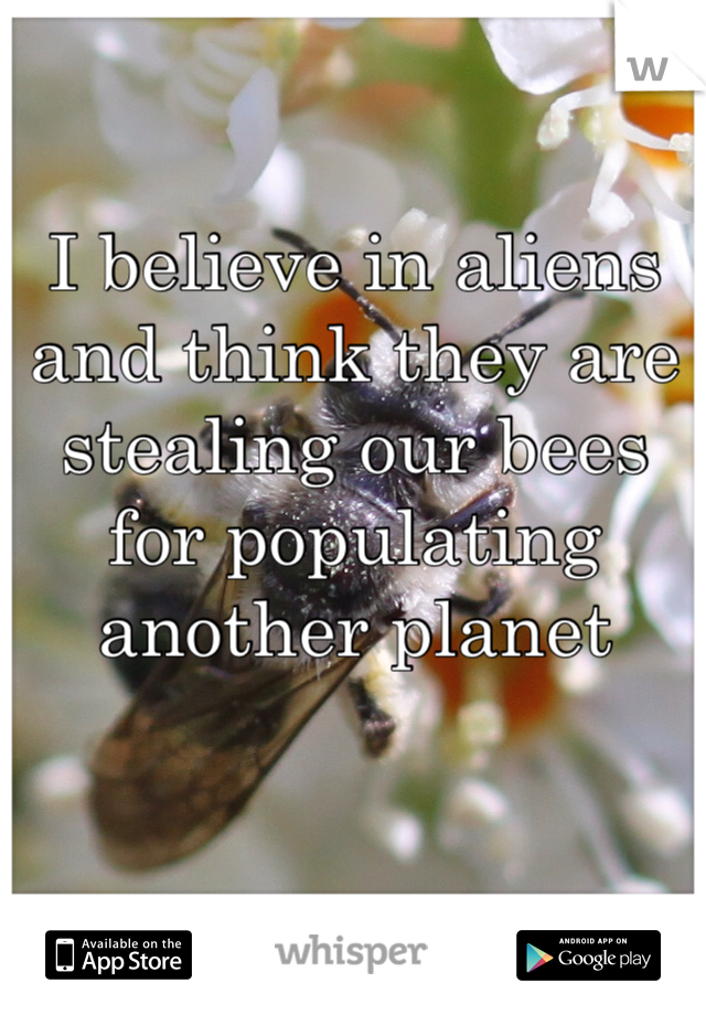 I believe in aliens and think they are stealing our bees for populating another planet