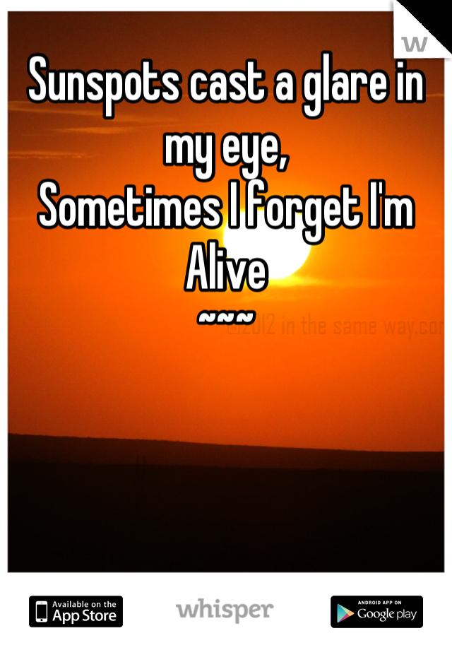 Sunspots cast a glare in my eye,  Sometimes I forget I'm Alive ~~~