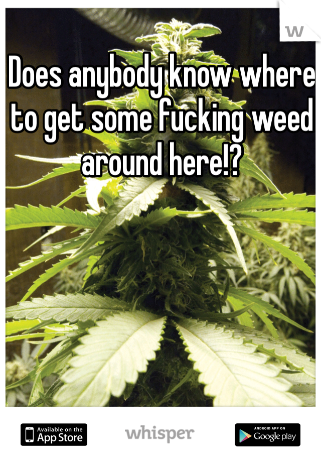 Does anybody know where to get some fucking weed around here!?