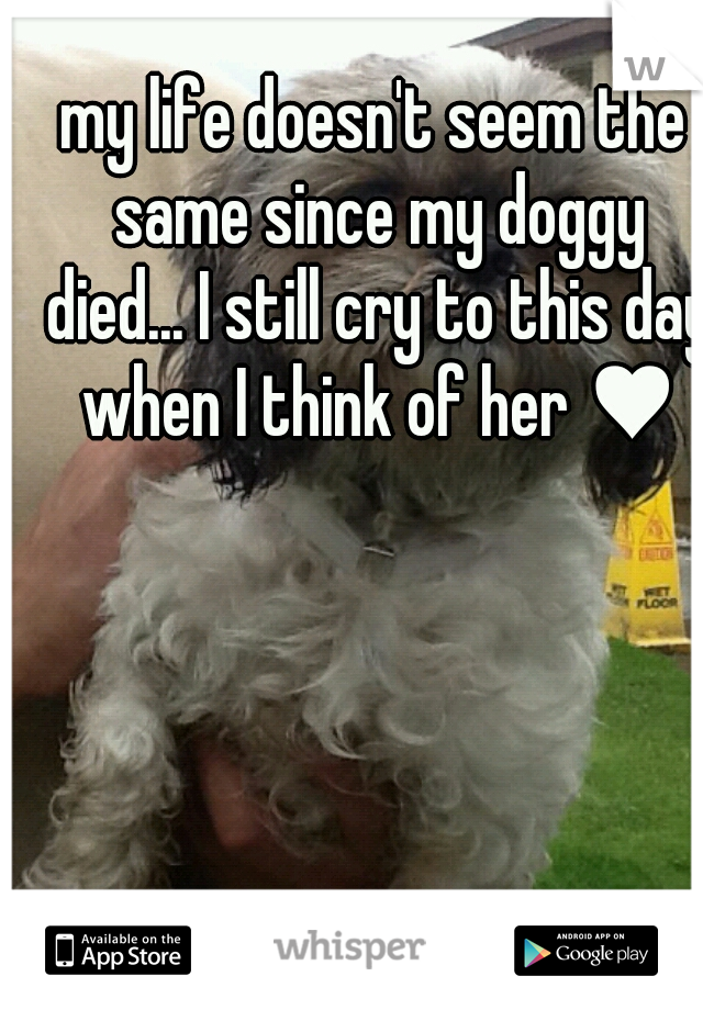 my life doesn't seem the same since my doggy died... I still cry to this day when I think of her ♥