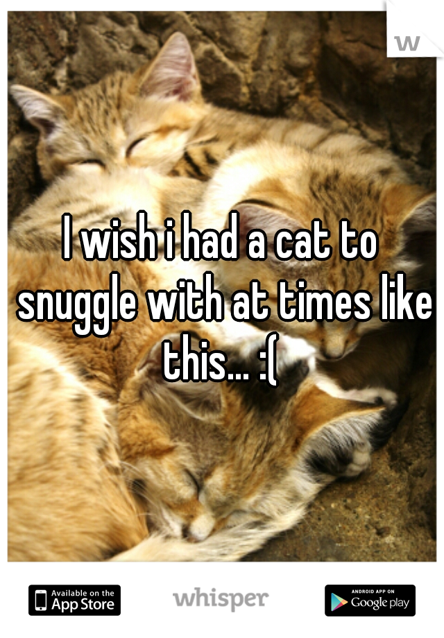 I wish i had a cat to snuggle with at times like this... :(