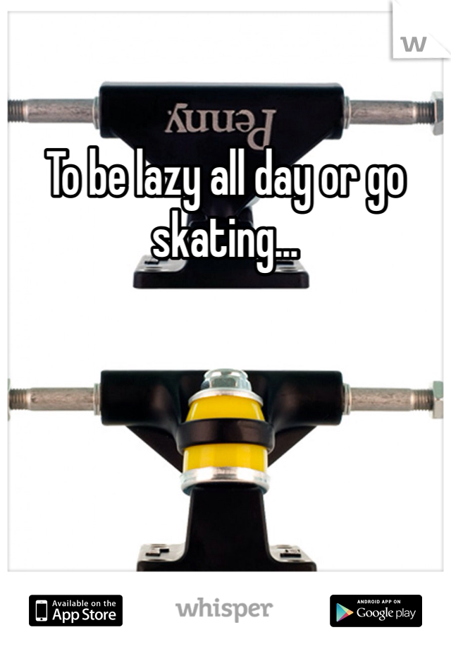 To be lazy all day or go skating...