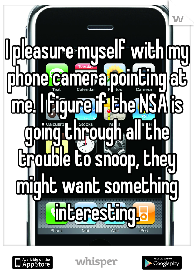 I pleasure myself with my phone camera pointing at me. I figure if the NSA is going through all the trouble to snoop, they might want something interesting.