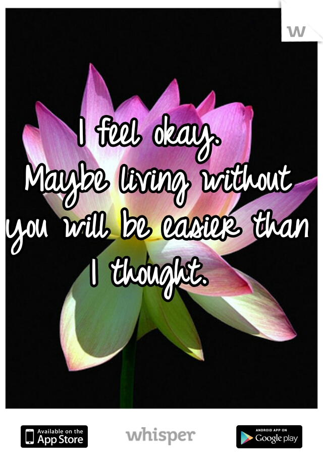 I feel okay.  Maybe living without you will be easier than I thought.