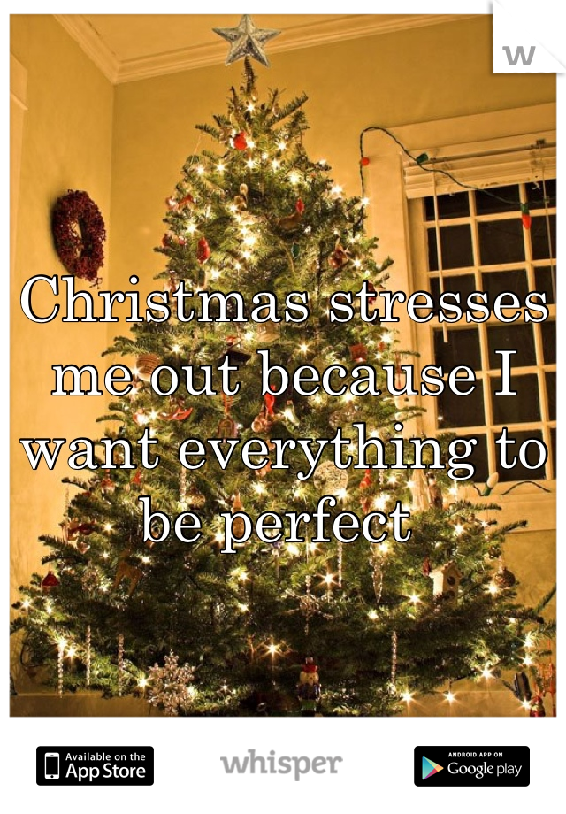 Christmas stresses me out because I want everything to be perfect