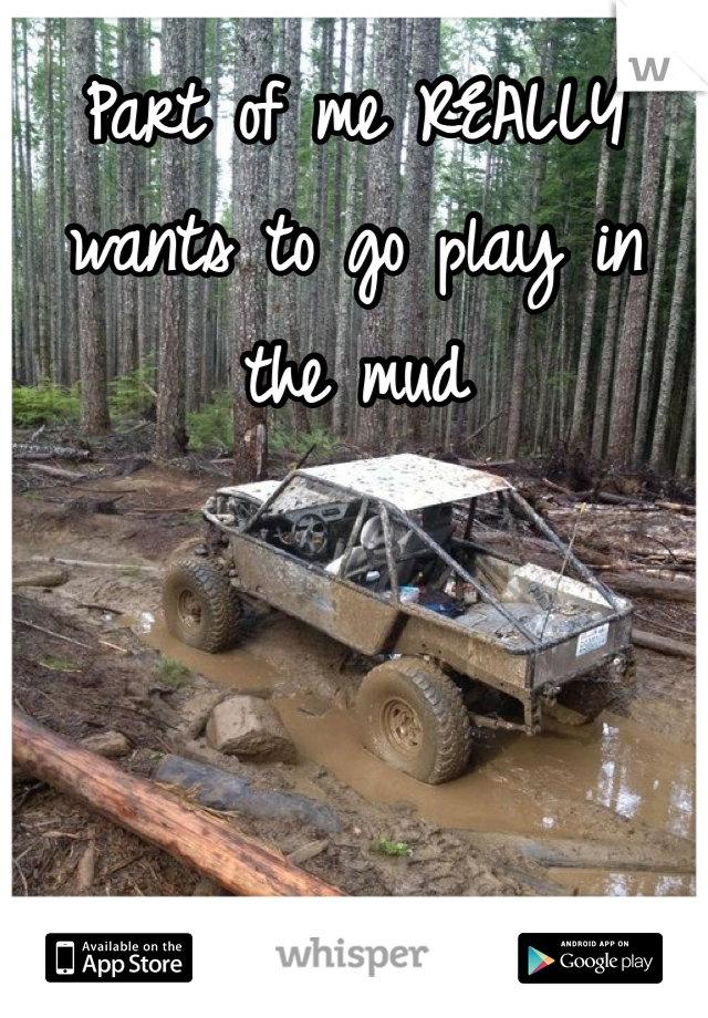 Part of me REALLY wants to go play in the mud