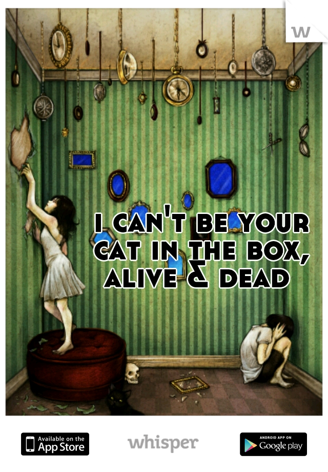 i can't be your cat in the box, alive & dead