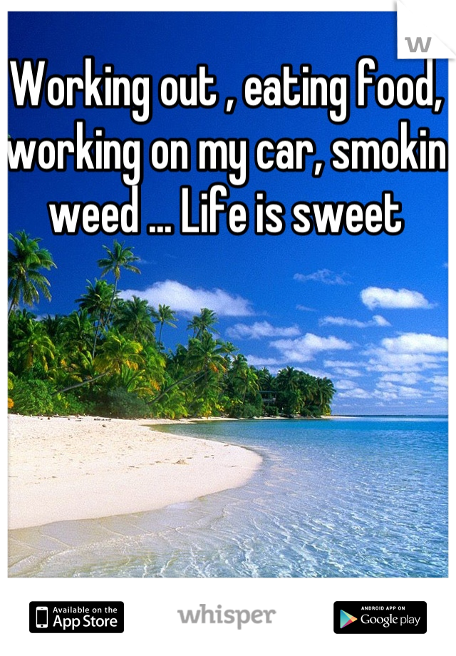 Working out , eating food, working on my car, smokin weed ... Life is sweet