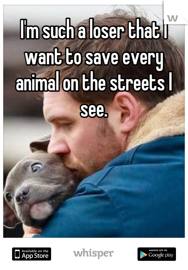 I'm such a loser that I want to save every animal on the streets I see.