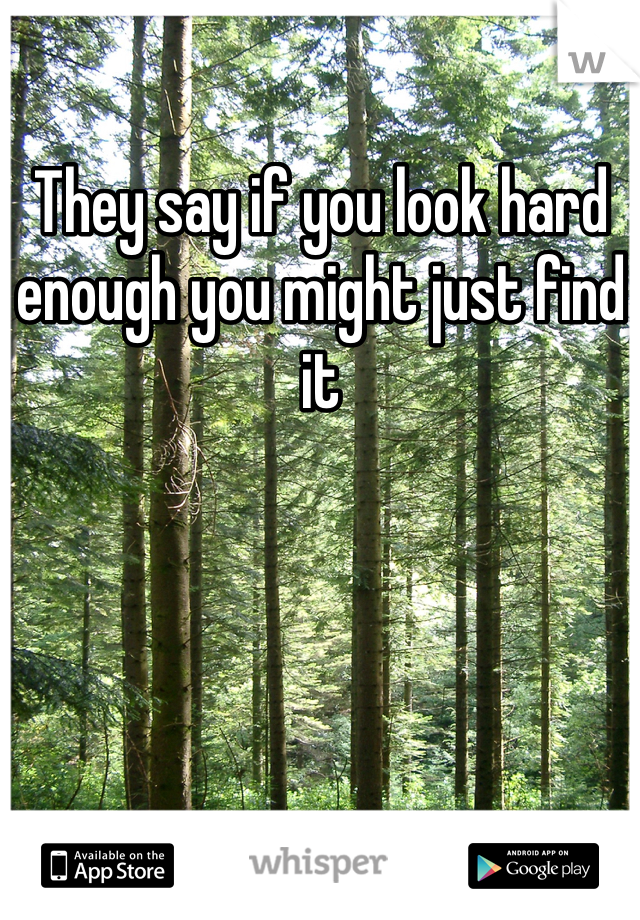 They say if you look hard enough you might just find it