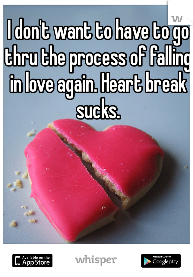 I don't want to have to go thru the process of falling in love again. Heart break sucks.