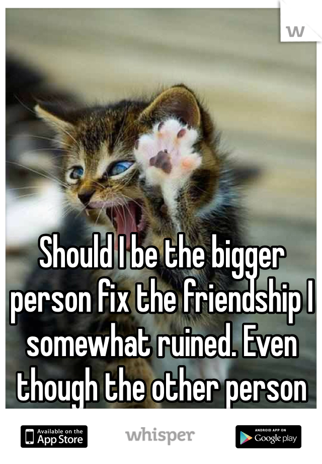 Should I be the bigger person fix the friendship I somewhat ruined. Even though the other person might not want to?