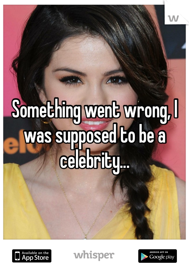 Something went wrong, I was supposed to be a celebrity...