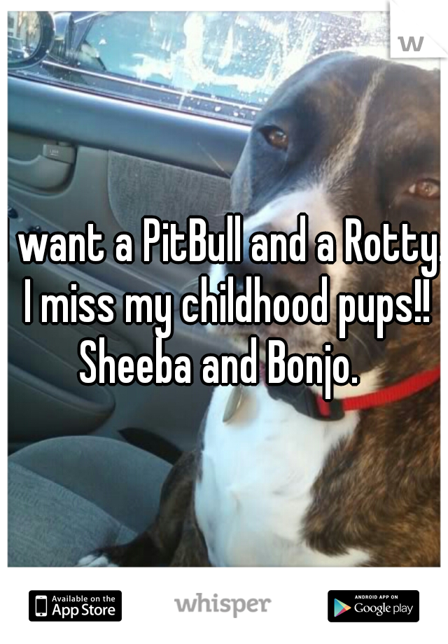 I want a PitBull and a Rotty. I miss my childhood pups!! Sheeba and Bonjo.