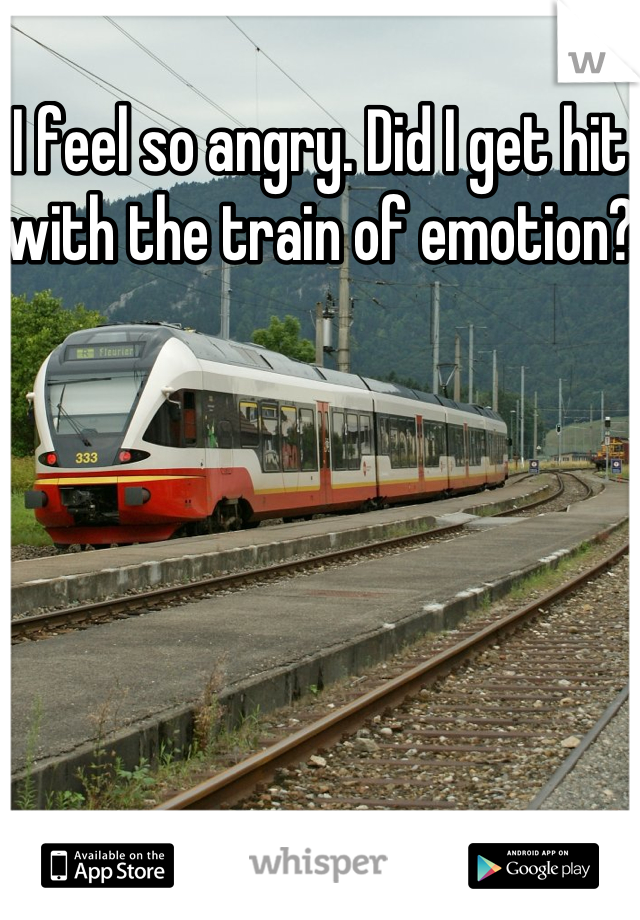 I feel so angry. Did I get hit with the train of emotion?