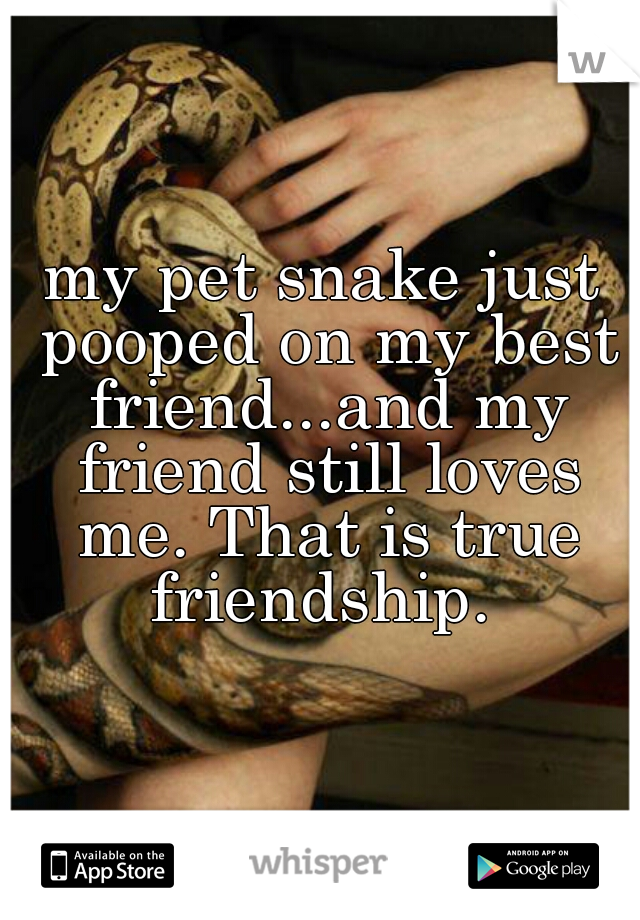 my pet snake just pooped on my best friend...and my friend still loves me. That is true friendship.