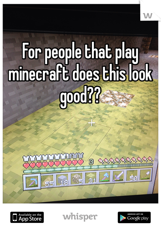 For people that play minecraft does this look good??