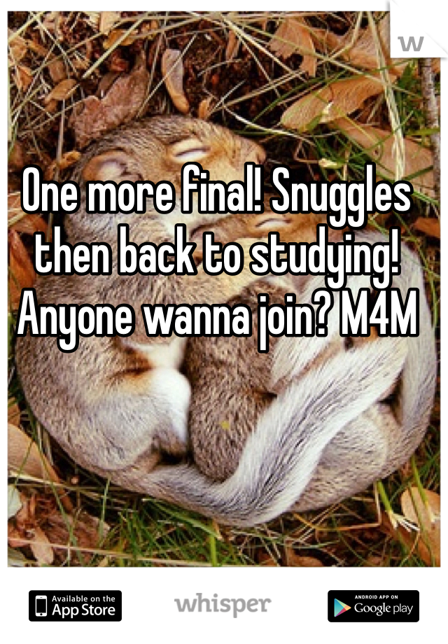 One more final! Snuggles then back to studying! Anyone wanna join? M4M