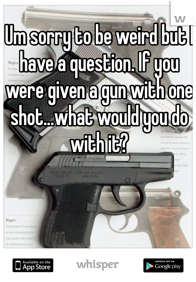 Um sorry to be weird but I have a question. If you were given a gun with one shot...what would you do with it?