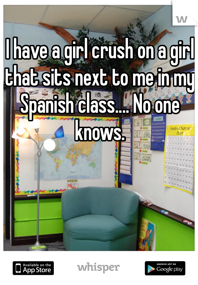 I have a girl crush on a girl that sits next to me in my Spanish class.... No one knows.