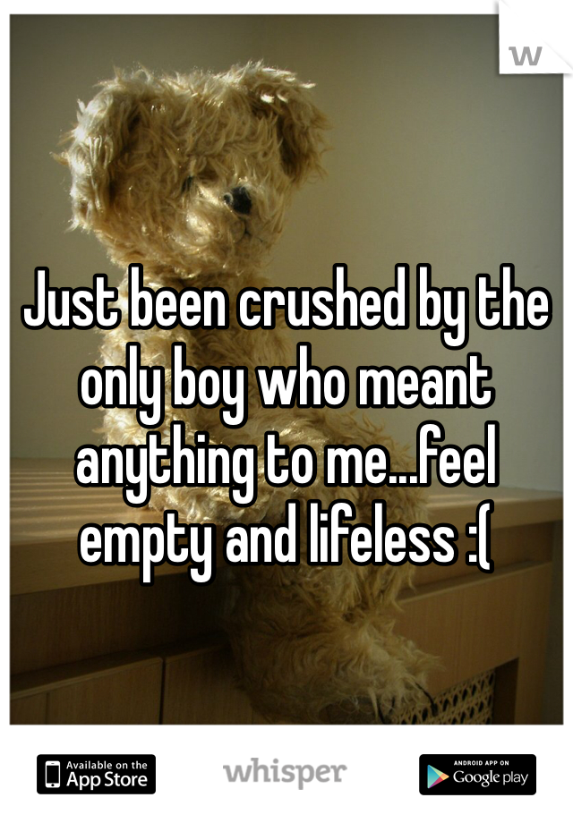 Just been crushed by the only boy who meant anything to me...feel empty and lifeless :(