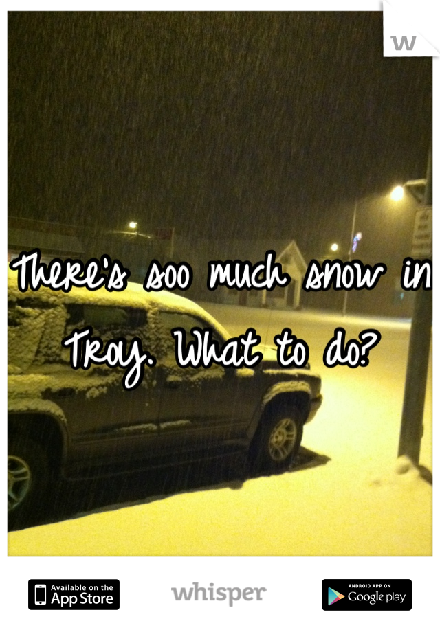There's soo much snow in Troy. What to do?