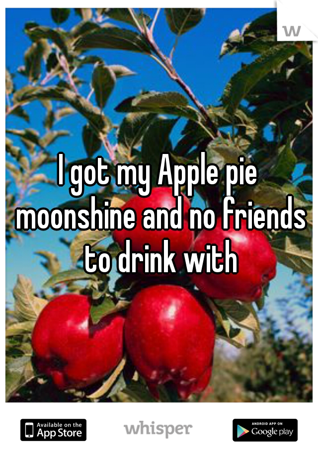 I got my Apple pie moonshine and no friends to drink with