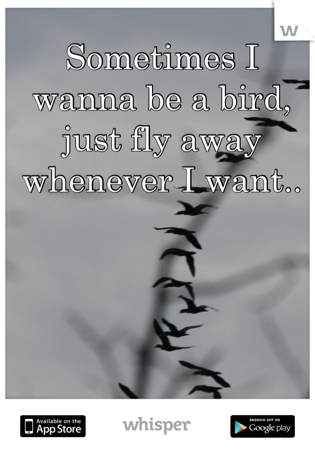 Sometimes I wanna be a bird, just fly away whenever I want..